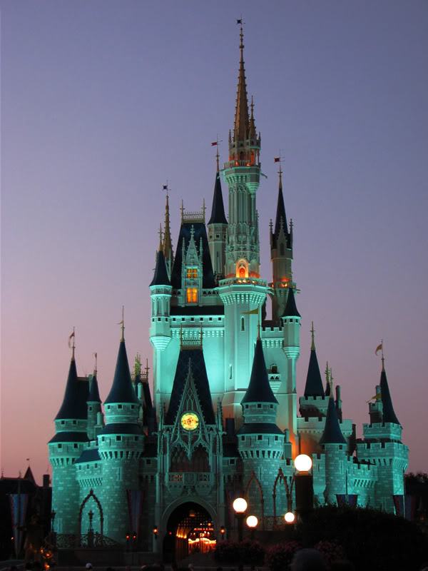 YOUR DISNEY CASTLE