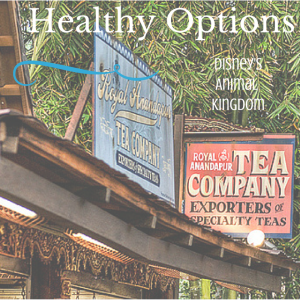 Disney-Animal-Kingdom-Healthy-Dining-Options-Tea-Anandapur