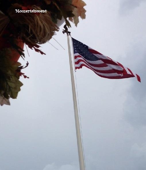 wdw dd flag 4