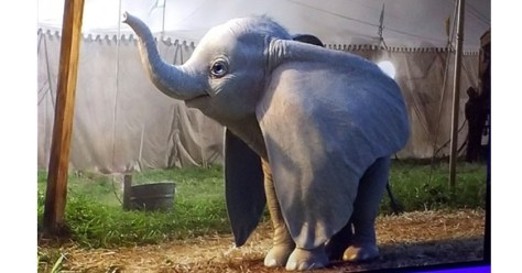 Live-Action-Dumbo.jpg